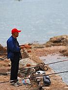 青岛游记之麦岛的消失与发现