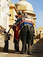 回忆印度 沙漠中的琥珀