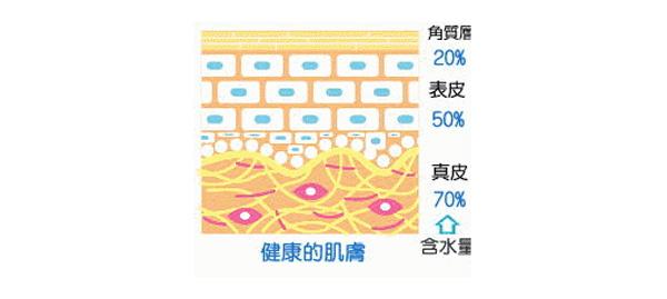 麗顏肌凱欣老師護膚貼士:皮膚又油又干還爆痘,該如何處理?